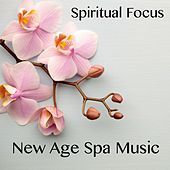 New Age Spa Music by Various Artists