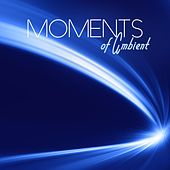 Play & Download Moments of Ambient by Various Artists | Napster
