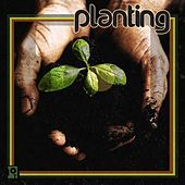 Play & Download Planting by Various Artists | Napster