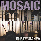 Play & Download Subterranea by Mosaic | Napster