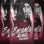 Te Encanta (feat. Sko El Geniako) [Miguel Mix] by Arcangel