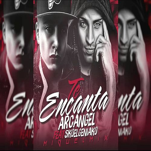 Play & Download Te Encanta (feat. Sko El Geniako) [Miguel Mix] by Arcangel | Napster