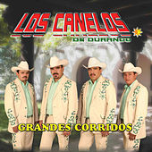Play & Download Grandes Corridos by Los Canelos De Durango | Napster