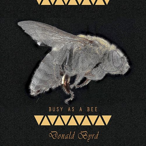 Busy As A Bee von Donald Byrd