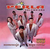 Homenaje A Rigo Tovar by Various Artists