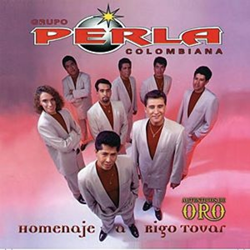 Homenaje A Rigo Tovar by Various Artists