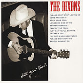 Still Your Fool by The Dixons
