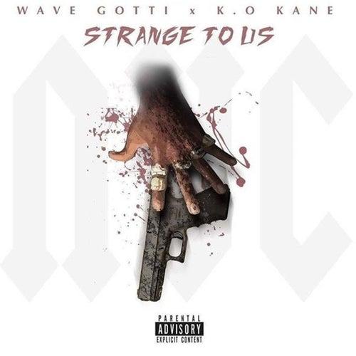 Strange to Us (feat. Wave Gotti) by Kokane