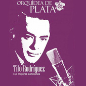 Play & Download Orquídea de Plata by Tito Rodriguez | Napster