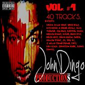 Play & Download John Dingo Productions, Vol. 1 by Various Artists | Napster