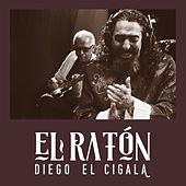Play & Download El Ratón by Diego El Cigala | Napster