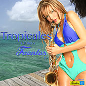 Play & Download Tropicales Clásicos Fuentes 19 by Various Artists | Napster