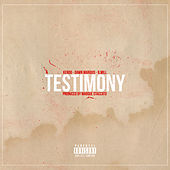 Play & Download Testimony by Baby Rasta & Gringo | Napster