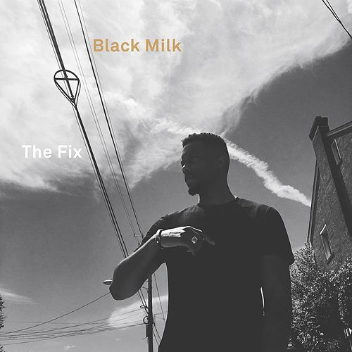Play & Download The Fix by Black Milk | Napster