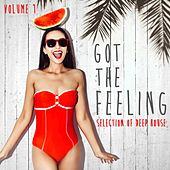 Got the Feeling Collection, Vol. 1 - Selection of Deep House by Various Artists