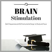 Brain Stimulation Playlist - Calm Frequencies and Soft Instrumental Songs to Study and Focus by Easy Listening Music Club