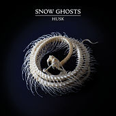 Play & Download Husk by Snow Ghosts | Napster