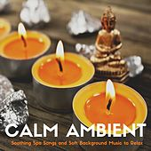 Play & Download Calm Ambient - Soothing Spa Songs and Soft Background Music to Relax by Ambient Music Collective | Napster