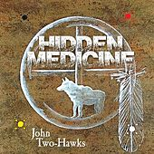 Hidden Medicine by John Two-Hawks