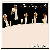 Play & Download It's Not a Negative No by Andy Prieboy   Napster