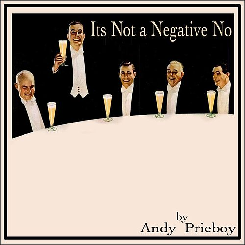 It's Not a Negative No by Andy Prieboy