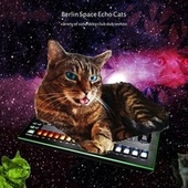 Berlin Space Echo Cats (Variety of Solid Deep Dub Techno) by Various Artists