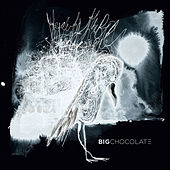 Play & Download Beauty of the Bird by Big Chocolate | Napster