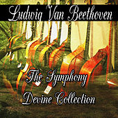 Play & Download Ludwig van Beethoven: The Symphony Divine Collection by Ludwig van Beethoven | Napster