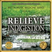 Relieve Indigestion: Sound Remedy for Soothing Heartburn by Yuval Ron