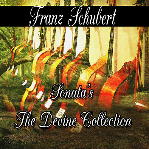 Franz Schubert: Sonata's The Divine Collection by Franz Schubert