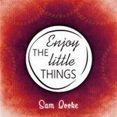 Enjoy The Little Things von Sam Cooke