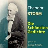 Theodor Storm: Die schönsten Gedichte von Jürgen Fritsche