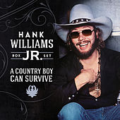 A Country Boy Can Survive (Box Set) by Various Artists
