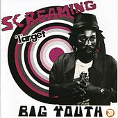 Screaming Target by Various Artists