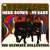 Play & Download Here Comes My Baby - The Ultimate Collection by The Tremeloes | Napster
