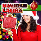Play & Download Navidad Latina by Various Artists | Napster