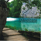 Afrobeat by Various Artists