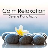 Calm Serene Piano Music by Exam Study Classical Music Orchestra