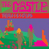 The Castle by The Flaming Lips