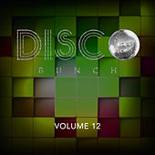 Disco Bunch, Vol. 12 by Various Artists