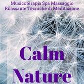 Play & Download Calm Nature - Musicoterapia Spa Massaggio Rilassante Centro Benessere e Tecniche di Meditazione con Suoni della Natura New Age Strumentali by Various Artists | Napster