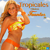 Play & Download Tropicales Clásicos Fuentes 20 by Various Artists | Napster