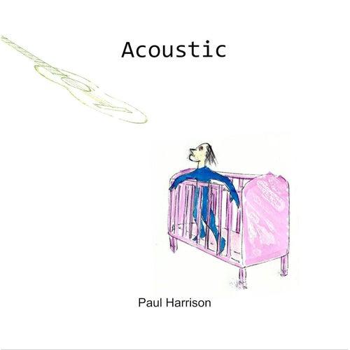 Acoustic by Paul Harrison
