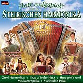Play & Download Flott aufgspielt mit der Steirischen Harmonika by Various Artists | Napster
