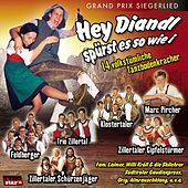 Play & Download Hey Diandl spürst es so wie i by Various Artists | Napster