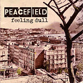 Play & Download Feeling Dull by Peacefield | Napster