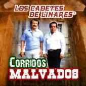 Corridos Malvados by Los Cadetes De Linares