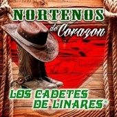 Play & Download Nortenos de Corazon by Los Cadetes De Linares | Napster