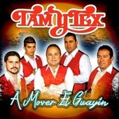 A Mover El Guayin by Tam Y Tex