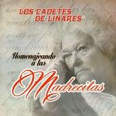 Play & Download Homenajeando a las Madres by Los Cadetes De Linares | Napster